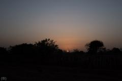 160317_2009_africa_sonyrx100m2_04524
